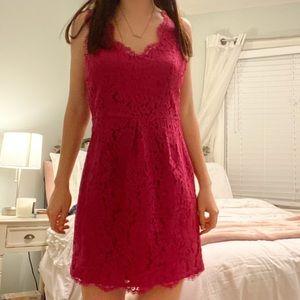 joie • beautiful lace cocktail dress